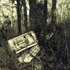 "фото ""mailbox"""