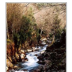 "photo ""The Creek that I love."""