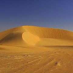 """фото """"Sand Dunes #7"""""""