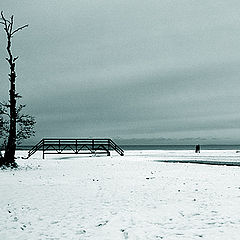 "фото ""дерево, мост, человеки"""