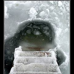 "photo ""winter joy"""