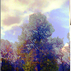 """photo """"Autumn Sketch in Cold Colours"""""""