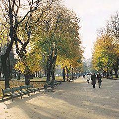 """photo """"Lvov, autumn"""""""