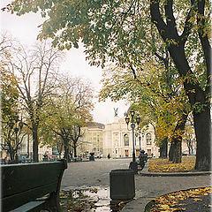 """photo """"Одна Львовская лужа"""""""