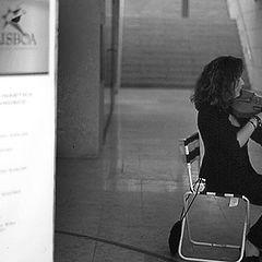 "фото ""The Street Violinist"""