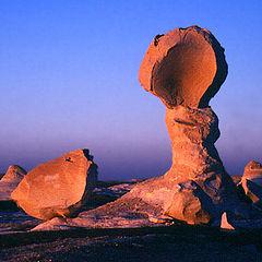 """фото """"Natural sculpture # 2"""""""