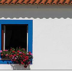 """фото """"Flowery window"""""""