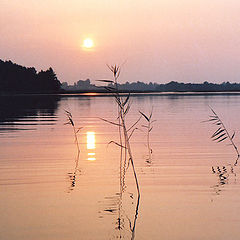 """фото """"На озере"""""""