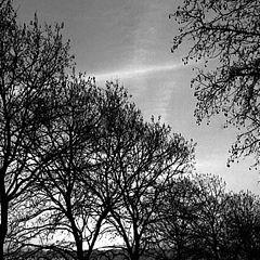 "фото ""Winter Sunset"""