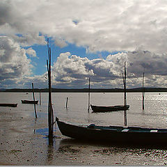 "фото ""Empty Tide"""