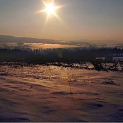 """фото """"Wintertime"""""""