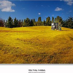 """photo """"On the farm"""""""