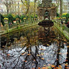 "фото ""Париж. Люксембургский сад."""