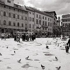 "фото ""Firenze"""