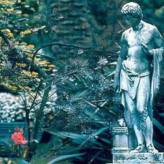 """photo """"In a roman garden"""""""