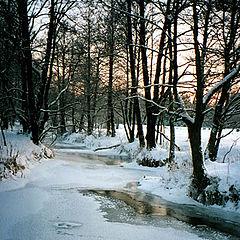 """фото """"Зиме в догонку"""""""