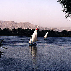 "фото ""Felukas on the Nile"""