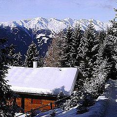 """фото """"Alpen, Tirol"""""""