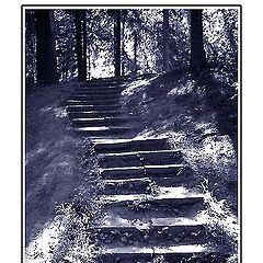 "фото ""Лестница души"""