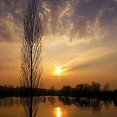 "photo ""Bohemian Landscape 96"""