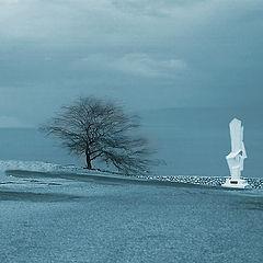 "фото ""Двое среди дождя"""