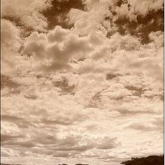 "фото ""Tropical day"""