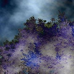"photo ""Through the bushes on a night fog .."""