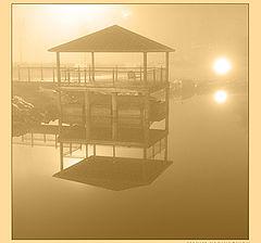 """фото """"Night fog"""""""