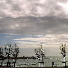 """фото """"Next to the sea"""""""