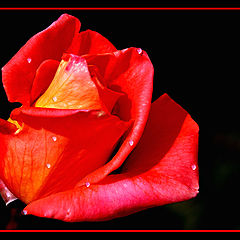 """photo """"Tears in red"""""""