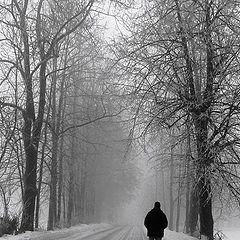 "фото ""Wandering"""