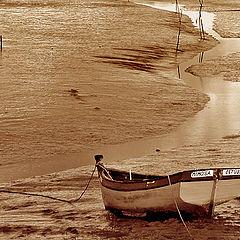 """фото """"Small River"""""""