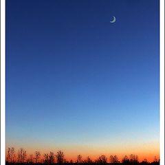 """фото """"Still evening"""""""
