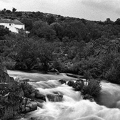 """фото """"wild river"""""""