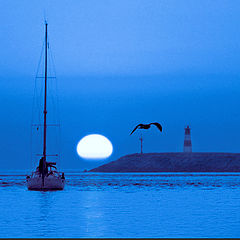 "фото ""Sailing in Blue"""
