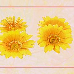 """photo """"Yellow flowers"""""""