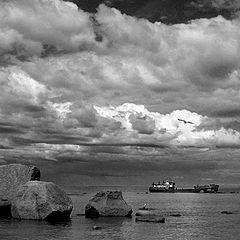 "photo ""Sad harbour"""