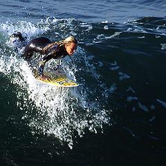 """фото """"Surfer"""""""