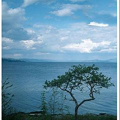 """фото """"Ocean view in Norway II"""""""