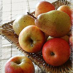 """фото """"Fruits"""""""