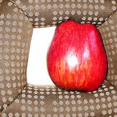 """фото """"Натюрморт с яблоком"""""""
