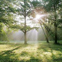 """фото """"Раннее утро августа II"""""""
