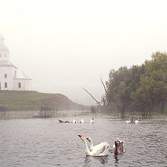 "фото ""Туманное утро на речке Каменка"""