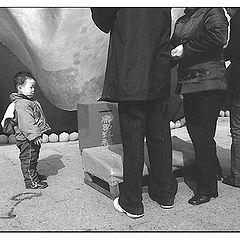 """фото """"большие и маленькие"""""""