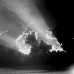 """фото """"Последние лучи солнца"""""""