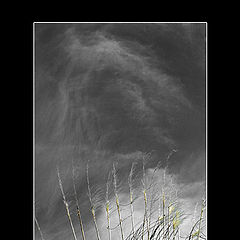 "photo ""wind"""