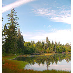 "фото ""Pond Corner"""