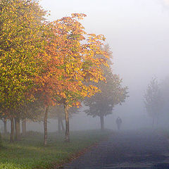 """фото """"Осенняя. Туманная."""""""