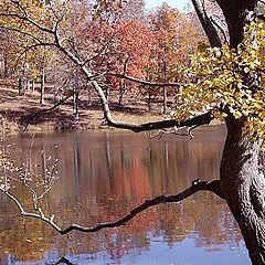 "фото ""Touches of Autumn"""