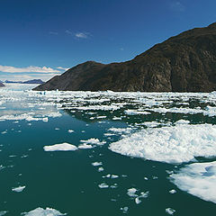 """фото """"лето в Гренландии"""""""